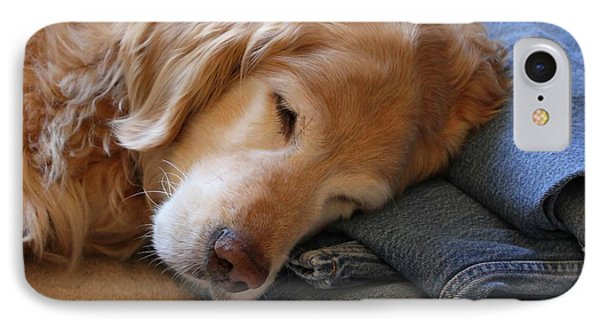 Golden Retriever Dog Forever On Blue Jeans IPhone Case by Jennie Marie Schell
