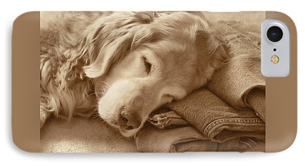 Golden Retriever Dog On Forever On Blue Jeans Sepia IPhone Case by Jennie Marie Schell