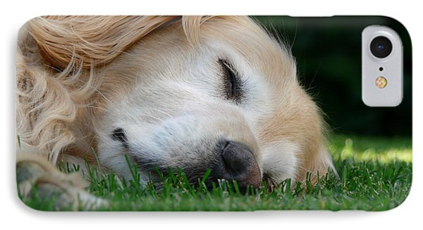 Golden Retriever Dog Sweet Dreams Phone Case by Jennie Marie Schell