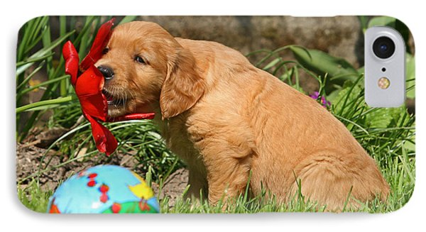 Golden Retriever Puppy Nibbling On A Flower IPhone Case by Dog Photos