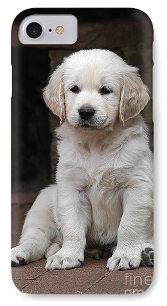 Golden Retriever Puppy Sitting On Cobbles IPhone Case by Dog Photos