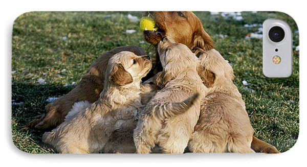 Golden Retriever With Pups IPhone Case