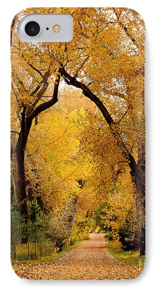 Golden Roads IPhone Case by Steven Reed