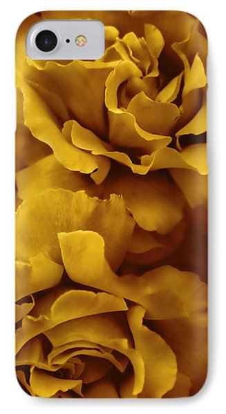 Golden Yellow Roses IPhone Case by Jennie Marie Schell