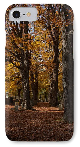 IPhone Case featuring the photograph Golden Rows Of Maples Guide The Way by Jeff Folger