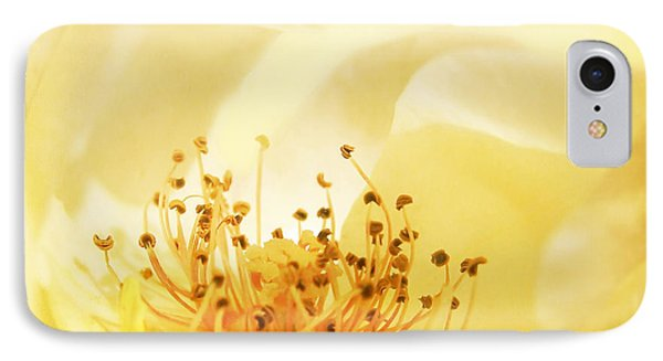 Golden Showers Rose IPhone Case by Deborah Smith