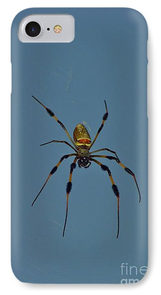 IPhone Case featuring the photograph Golden Silk Orbweaver by Lynda Dawson-Youngclaus