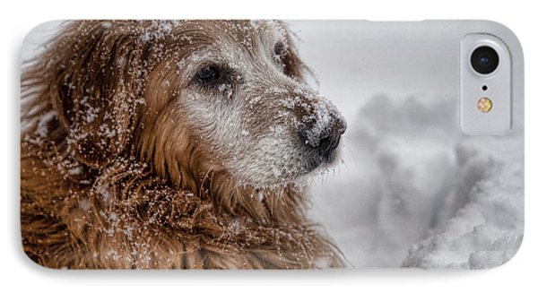 Golden Snow II IPhone Case by John Crothers