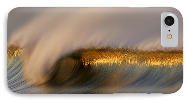 Golden Stripe Mg_9094 IPhone Case by David Orias