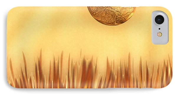 Golden Summers IPhone Case by Wendy J St Christopher