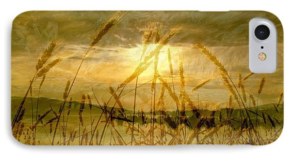 Golden Sunset IPhone Case by Barbara St Jean