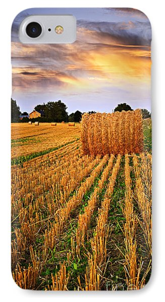Golden Sunset Over Farm Field In Ontario IPhone Case by Elena Elisseeva