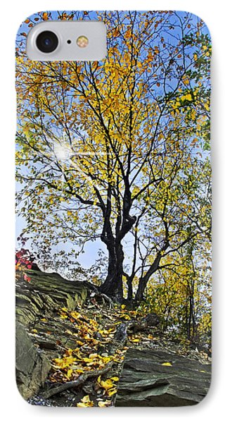 Golden Tree IPhone Case by Christina Rollo