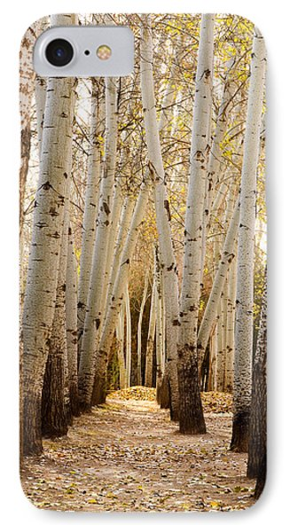 IPhone Case featuring the photograph Golden Trees Dunhuang China by Sally Ross