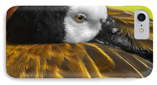 Golden Wings IPhone Case by Marion Johnson