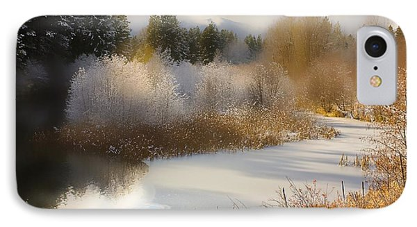 IPhone Case featuring the photograph Golden Winter by Sonya Lang