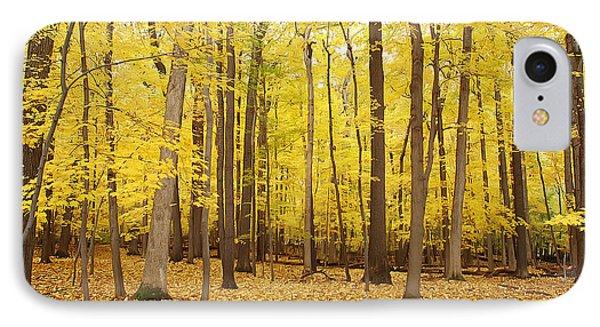 Golden Woods IPhone Case