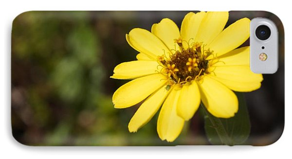 Golden Zinnia Phone Case by Photographic Arts And Design Studio