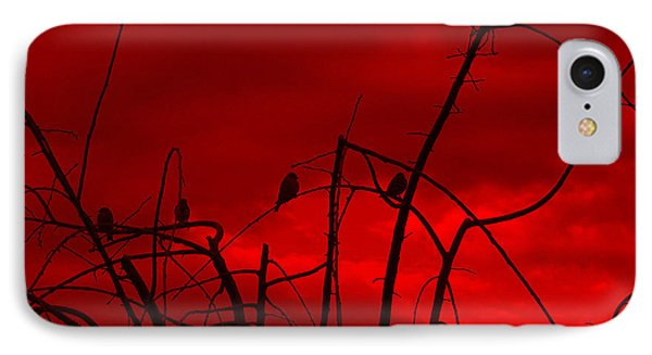 Goldfinch Against Red IPhone Case by Heidi Manly