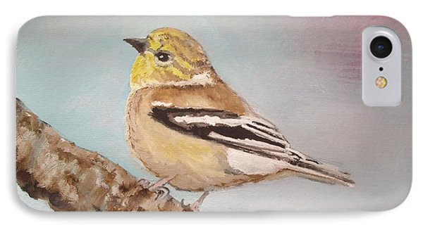 Goldfinch In Winter Plumage IPhone Case by Carole Robins