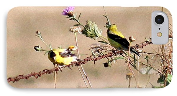Goldfinch Quest 1 IPhone Case by Erica Hanel