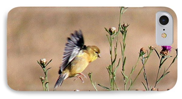 Goldfinch Quest 2 IPhone Case by Erica Hanel