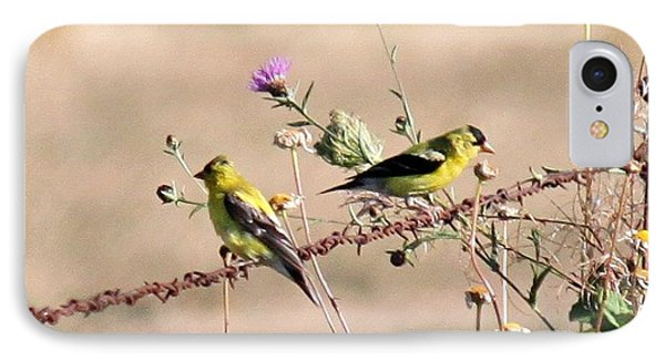 Goldfinch Quest 5 IPhone Case by Erica Hanel