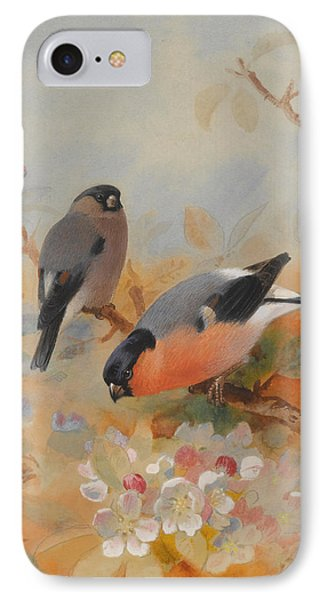 Goldfinches Bullfinches IPhone Case