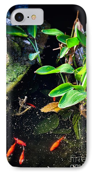 IPhone 7 Case featuring the photograph Goldfish In Pond by Silvia Ganora