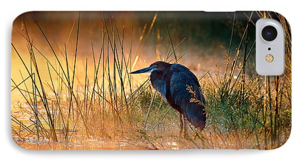 Heron iPhone 7 Case - Goliath Heron With Sunrise Over Misty River by Johan Swanepoel