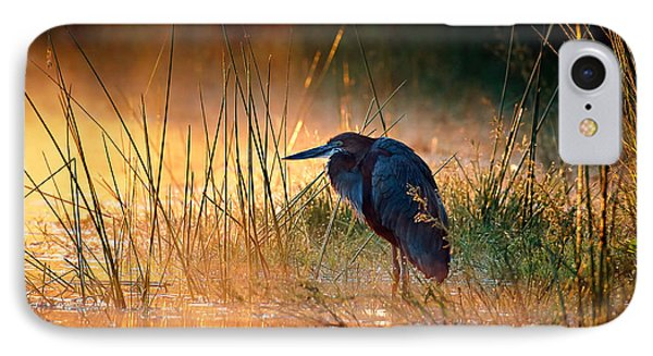 Goliath Heron With Sunrise Over Misty River Phone Case by Johan Swanepoel