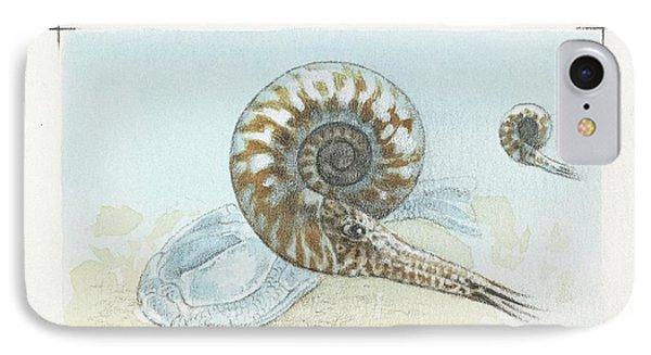 Goniatite Ammonites IPhone Case