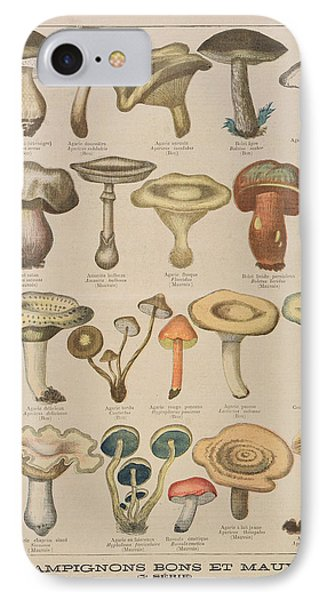 Good And Bad Mushrooms IPhone 7 Case