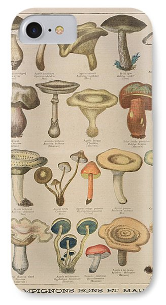 Good And Bad Mushrooms IPhone 7 Case by French School