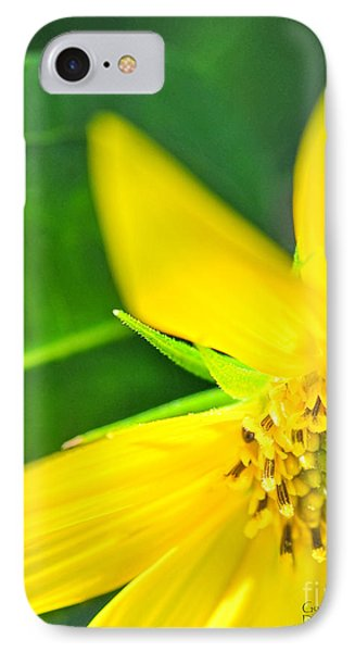 IPhone Case featuring the photograph Good Cheer by David Perry Lawrence
