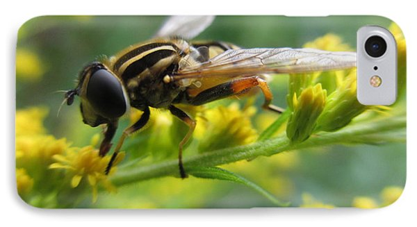 Good Guy Hoverfly  IPhone Case