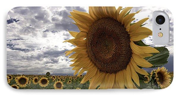 Good Morning Sunshine IPhone Case by Kristal Kraft
