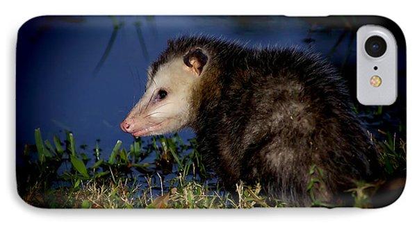 IPhone Case featuring the photograph Good Night Possum by Olga Hamilton