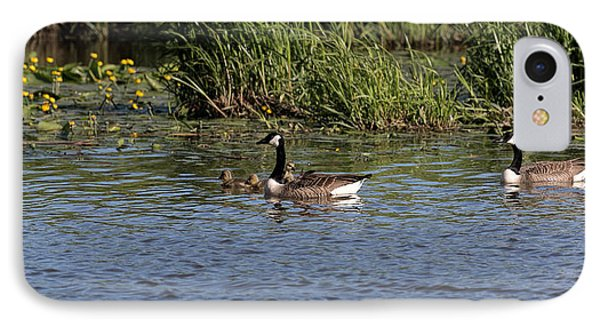 IPhone Case featuring the photograph Goose Family In The Water by Leif Sohlman