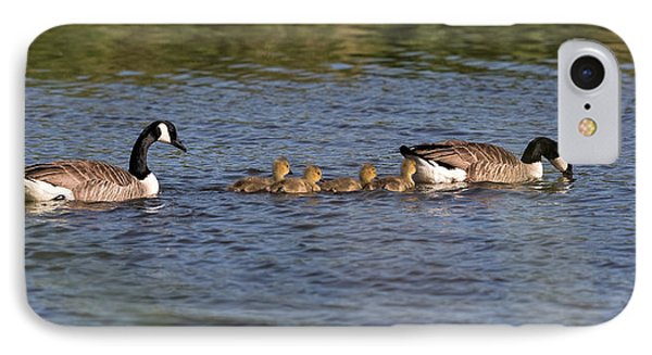 IPhone Case featuring the photograph Goose Family by Leif Sohlman