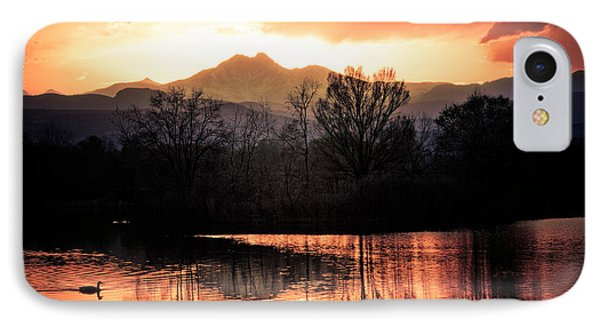 Goose On Golden Ponds 1 Phone Case by James BO  Insogna
