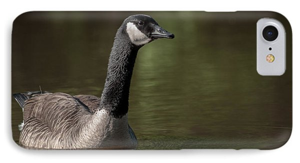 Goose On Pond IPhone Case