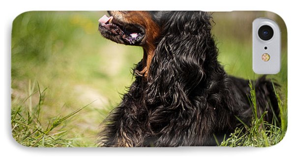 Gordon Setter IPhone Case by Izzy Standbridge