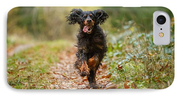 Gordon Setter Running    IPhone Case by Izzy Standbridge
