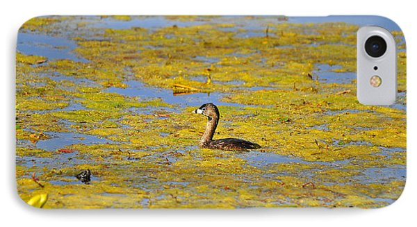 Gorgeous Grebe Phone Case by Al Powell Photography USA