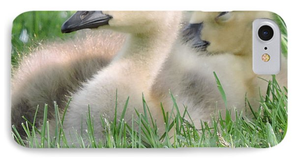 IPhone Case featuring the photograph Goslings by Peg Toliver