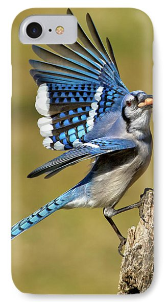 Bluejay iPhone 7 Case - Gotta Go by Bill Wakeley