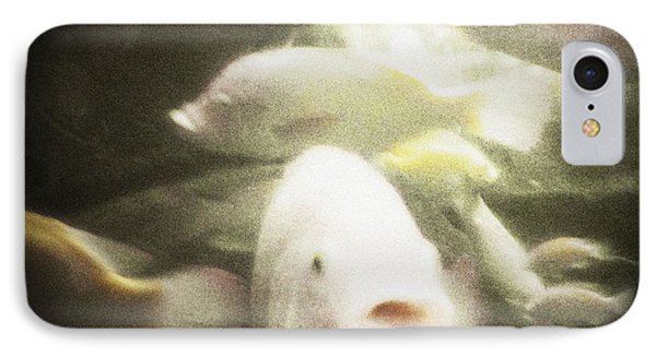IPhone Case featuring the photograph Gouramis by Bradley R Youngberg