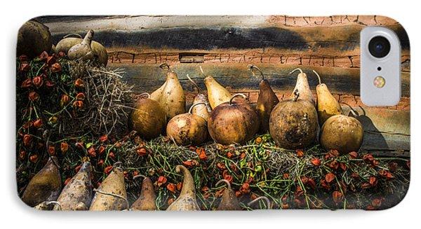 Gourds Phone Case by Debra and Dave Vanderlaan