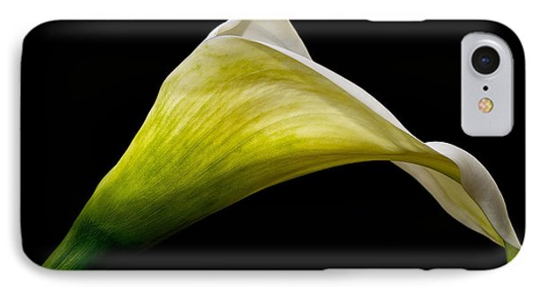 IPhone Case featuring the photograph Graceful Curves by Kim Andelkovic